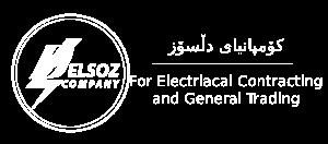 Delsoz Company